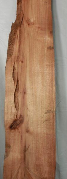 Hawaiian Koa Board FW13111