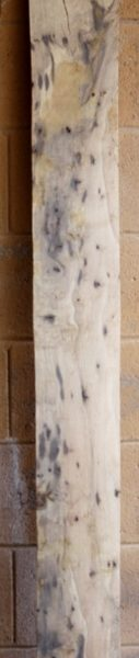 Blue Oak Spalted Character Lumber, FW13106