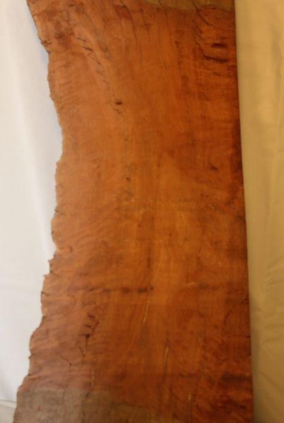 Iron Wood, FW13117