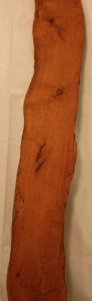 Iron Wood, FW13118