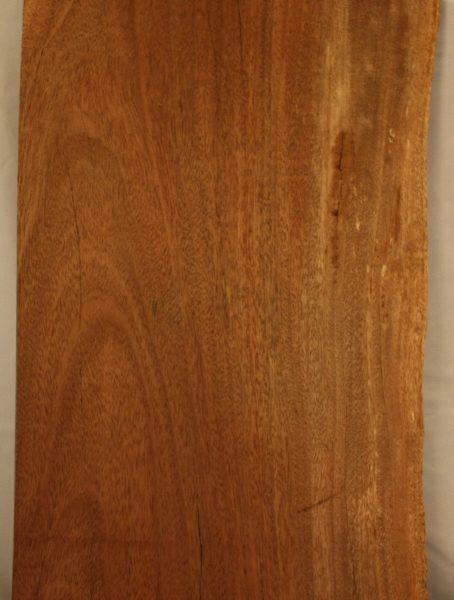 Iron Wood, FW13125