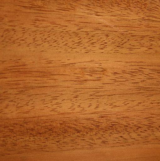 Palm Wood, FW13131