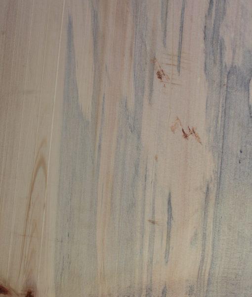 Norfolk Pine, FW13152