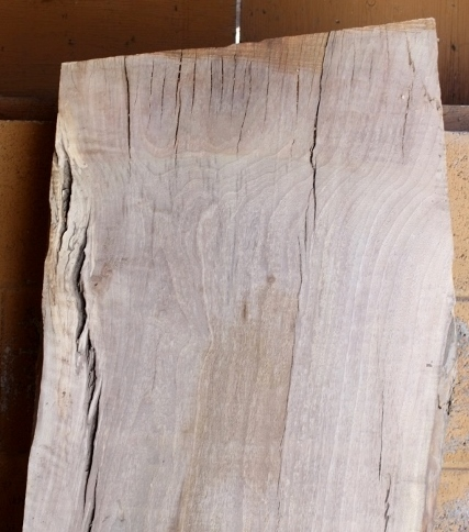 English Walnut Slab, FW13164