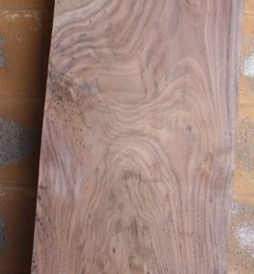 English Walnut Slab, FW13167