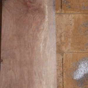 Sycamore Lumber, FW13176