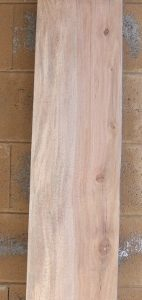 Sycamore Lumber Board, FW13180