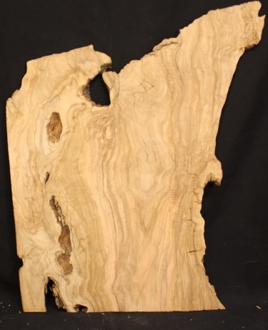California Olive Wood Panel, XA07
