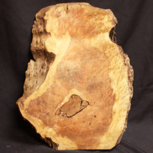 Redwood Burl, JM8
