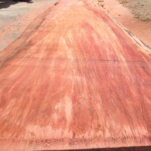 Giant Sequoia Redwood Live Edge Slab, FW1655