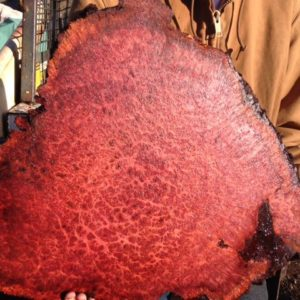 redwood lace burl round