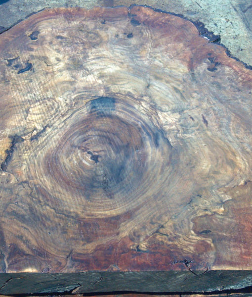 California Claro Walnut Burl Round, CHL1026