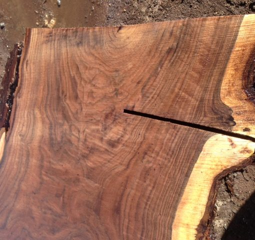 Claro Walnut Live Edge Slab, FW1607