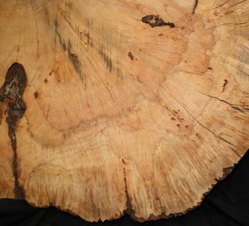 Cherry Wood Burl Round FW121377