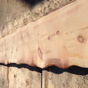 Sugar Pine Natural Edge Slab, FW1733