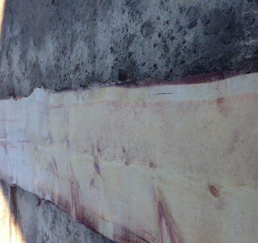 Sugar Pine Natural Edge Slab, FW1732