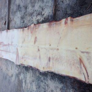 Sugar Pine Live Edge Slab, FW1730