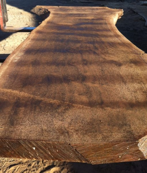 Claro Walnut Natural Edge Slab, FW1964