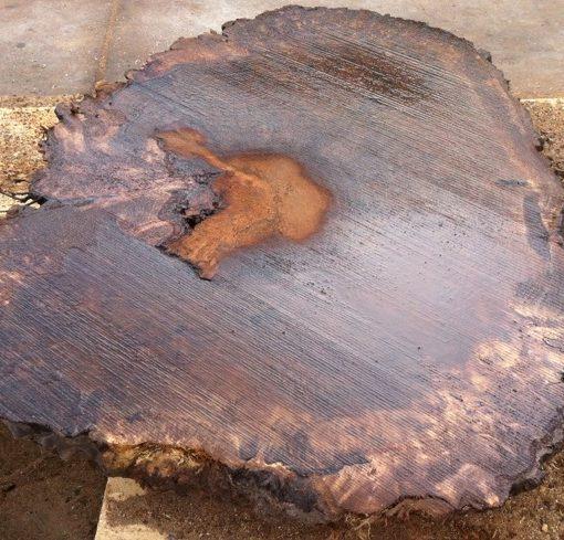 Claro Walnut Burl Round Slab, FW1841