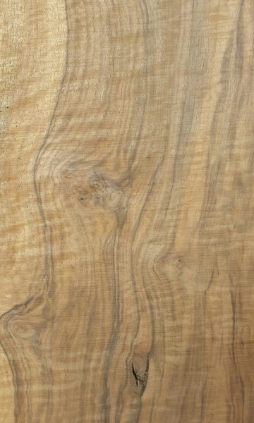 close up view of bastogne walnut slab