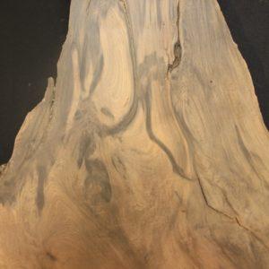 Redwood Root - Purple Wood, JM5A