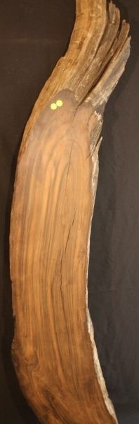 Redwood Root Slab, JM2