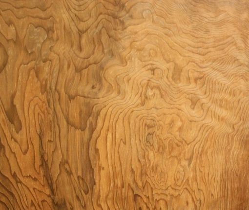 Redwood Burl Salvaged, JM3
