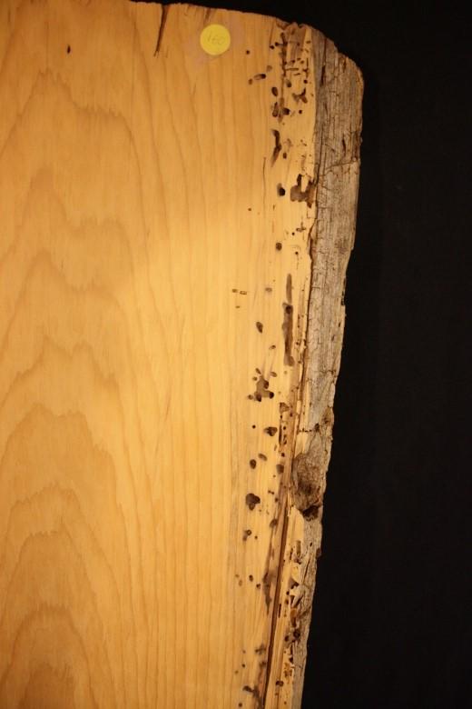 Nutmeg Lumber