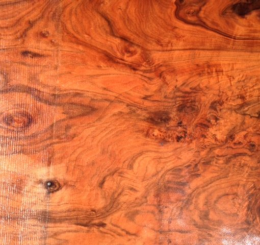 Claro Walnut Slab, FW1904