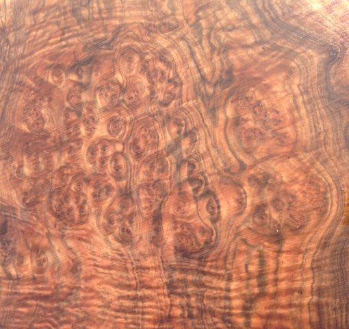 Claro Walnut Burl Cluster, FW1914