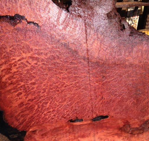 Redwood Burl Slab, Curly, FW1108