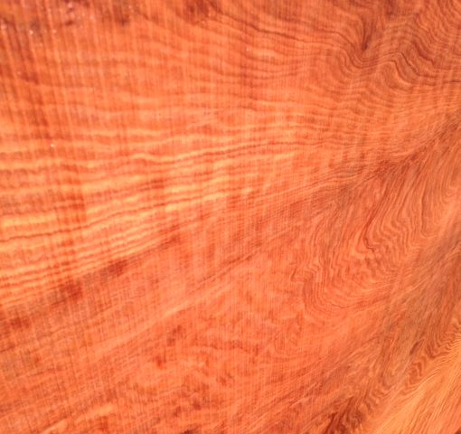 Redwood Slab, Curly, FW1145