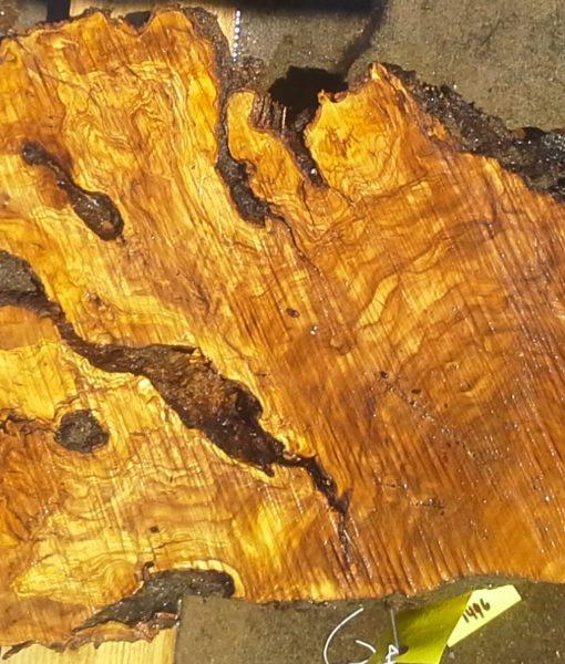 Olive Wood Slab, KC1496