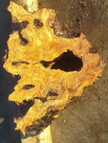 Olive Wood Slab, KC1227