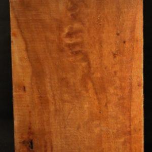 Cottonwood Burl