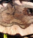 Blue Oak Burl Round, PE1512