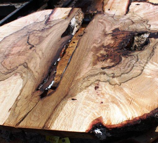 Blue Oak Burl, PE1515