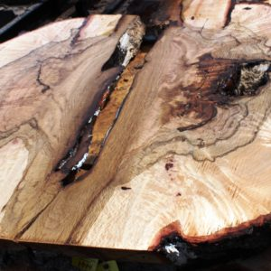 Blue Oak Burl, PE1516