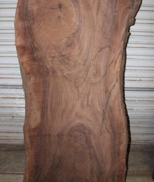 Claro Walnut Slab, FW1551