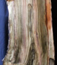 Pistachio Blank, KC051405