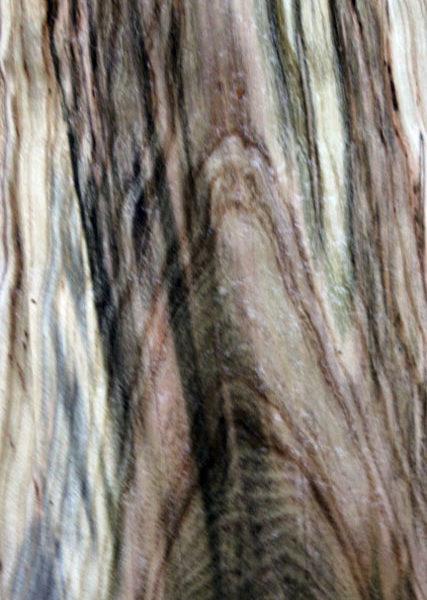Pistachio Blank, KC051406