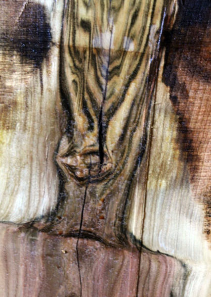 Pistachio Wood Blank, KC051410