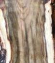 Pistachio Blank, KC051418