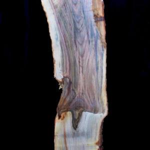 Pistachio Wood, KC051443