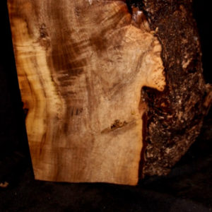 Myrtle Wood Turning Block, SJMY145