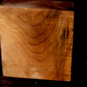 Myrtle Wood Turning Blank, SJMY113