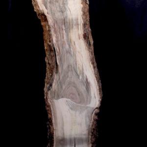Pistachio Blank, KC051479