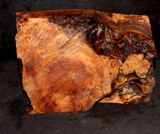 Big Leaf Maple Burl Turning Block, SJMA101