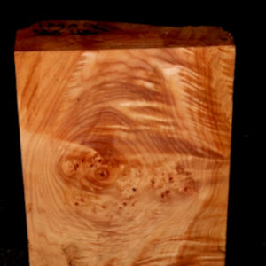 Big Leaf Maple Blank, SJMA119