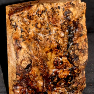 Big Leaf Maple Burl Turning Blank, SJMA121